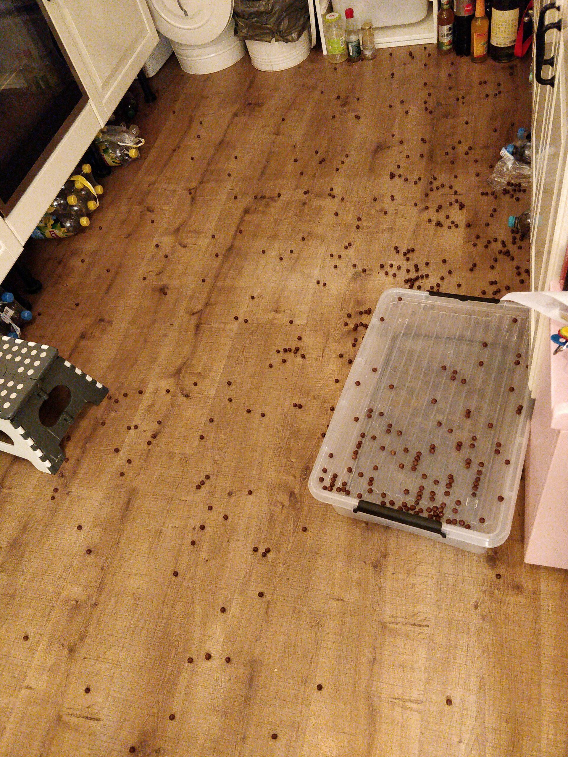 Viel Müsli auf dem Boden in der Küche